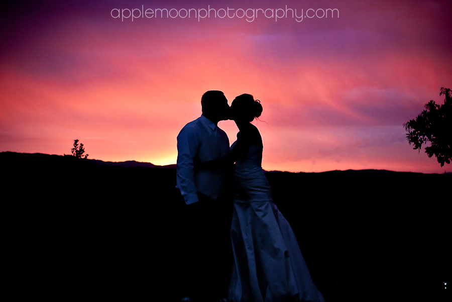 applemoon-photography-laci-danny-8-22-09-4441