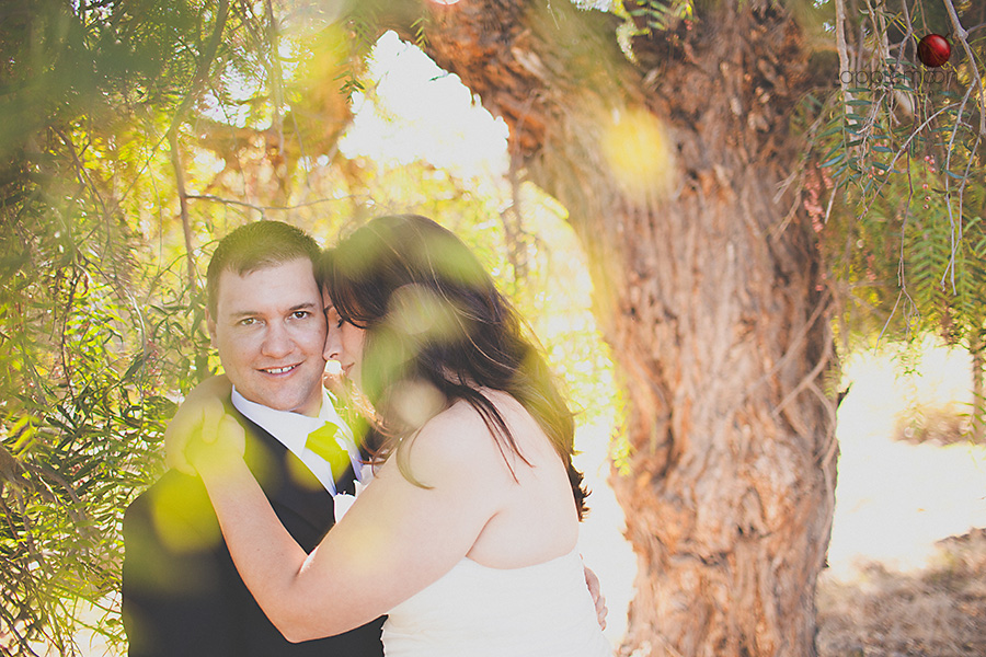 san luis obispo wedding photographers