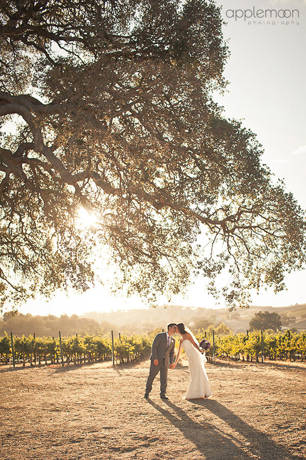 Paso Robles Photographers