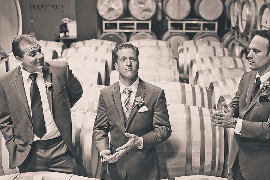 california wine country destination wedding photography