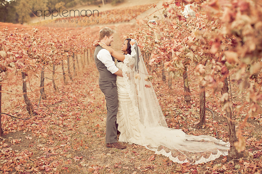 Hammersky Vineyards Wedding Photographer
