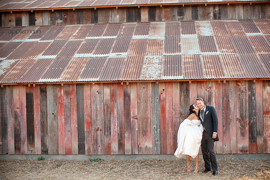 paso robles wedding, castoro cellars wedding