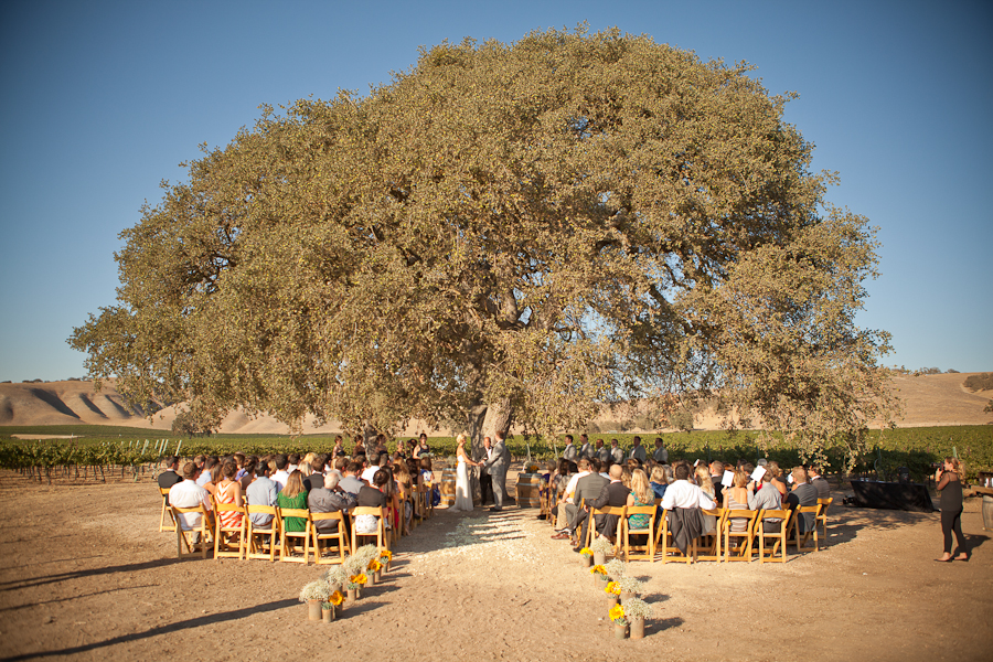paso robles wedding photographers